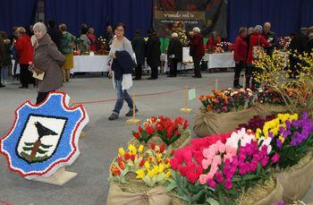 Na tisoče cvetov iz krep papirja, 6. vseslovenska razstava