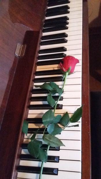 Naj prijateljstvo živi, ki pesem ga rodi...
