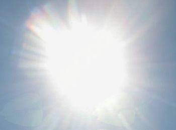 Kako ravnati v vročinskem valu?