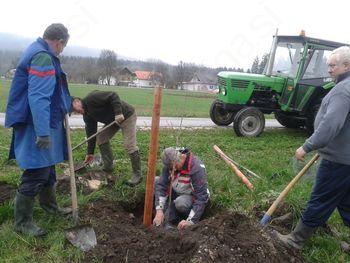 Člani Ekološkega društva sodelovali na akciji