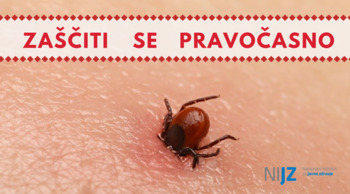 Toplejše vreme poveča nevarnost okužbe s klopnimi boleznimi