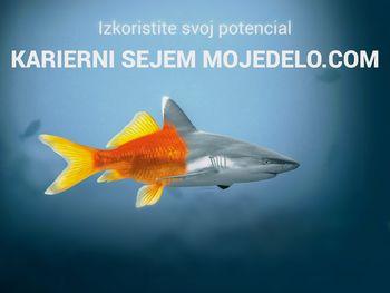 Karierni sejem MojeDelo.com - priložnost do nove zaposlitve