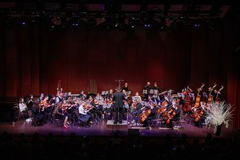 Odprt vpis v Glasbeno šolo Nova Gorica za šolsko leto 2020/21