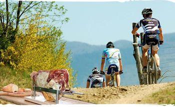 Vrtejbnska biciklijada