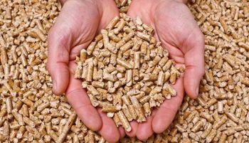 Prihranite na kurjavi in se grejte na biomaso!