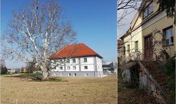 Zlata vrtnica Dvorcu Lanovž, metla lastnikom propadajoče stavbe v mestu