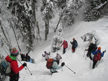 Zimska planinska šola 2019 | razpis