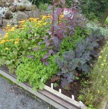 Temelji naravnega varstva in pridelava rastlin
