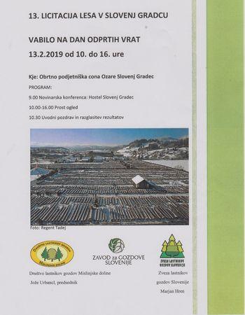 13. Licitacija lesa v Slovenj Gradcu