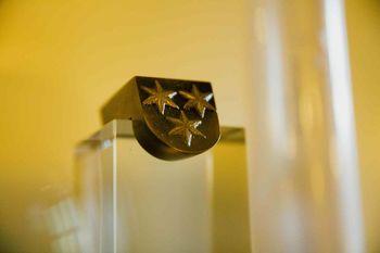 Mestni svet bo odločal tudi o dveh nominirancih za naziv častni meščan Celja