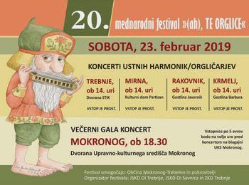 """20. mednarodni festival """"(ah), TE ORGLICE"""""""