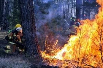 Preklicana velika požarna ogroženost na nekaterih območjih