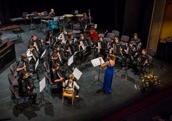 10. Srečanje harmonikarskih orkestrov Slovenije