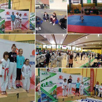 2. Pokalna tekma Karate zveze Slovenije 2019