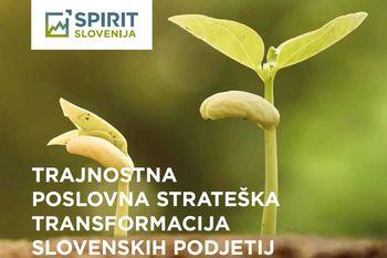 Trajnostna poslovna strateška transformacija slovenskih podjetij