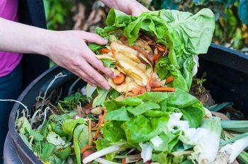 Priročnik s ključnimi koraki za preprečevanje nastajanja zavržene hrane