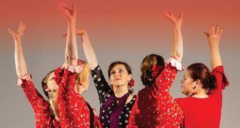 Flamenko - večer španskega plesa in glasbe