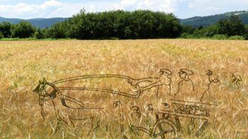 Kapiteljska njiva: Način pokopa v starejši železni dobi