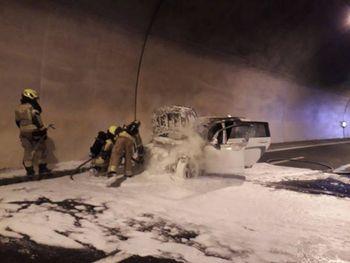 Kako je delovala Ljubljanska javna gasilska služba v letu 2019