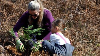 Dan za spremembe 2020 – Pogozdovanje v Mestni hosti