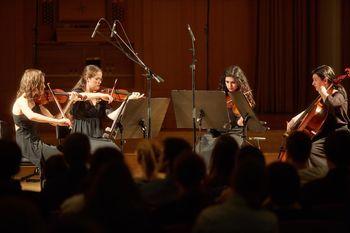 Koncert godalnega kvarteta D.A.M.A.