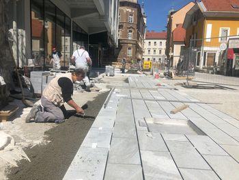 Obnovljeno Gubčevo ulico bodo krasile japonske češnje