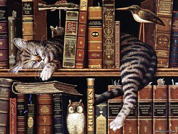 Krajevna knjižnica Dobrovnik