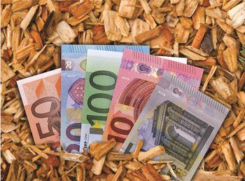 Poziv za javno zbiranje ponudb v postopku prodaje 100 % deleža kapitala v družbi Javno podjetje Energetika Šentrupert d.o.o.