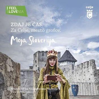 Skupna vstopnica Stari grad Celje in muzeji v mestu