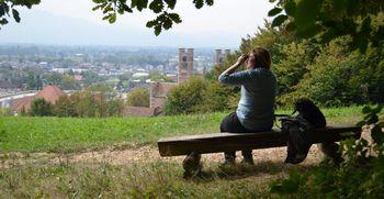 Strategija razvoja urbanih gozdov Ljubljane 2020 - 2030