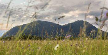 Glasujte za Tek na Šmarno goro