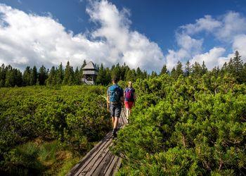 Aktivnosti v turistični destinaciji Rogla-Pohorje