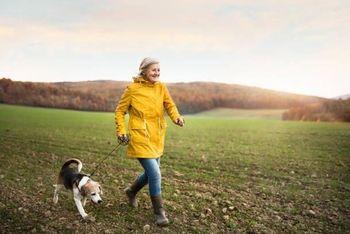 Obveznosti lastnikov hišnih živali