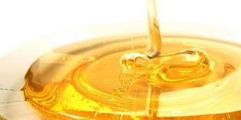 Karakterizacija čebeljih pridelkov