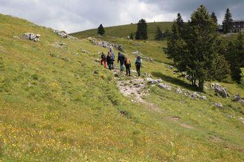 Letos več domačih planincev v slovenskih kočah in gorah
