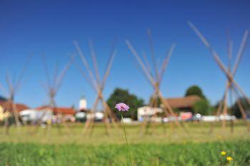 Pravilna uporaba organskih gnojil in kako obvarovati dolino Temenice - bisera Dolenjske