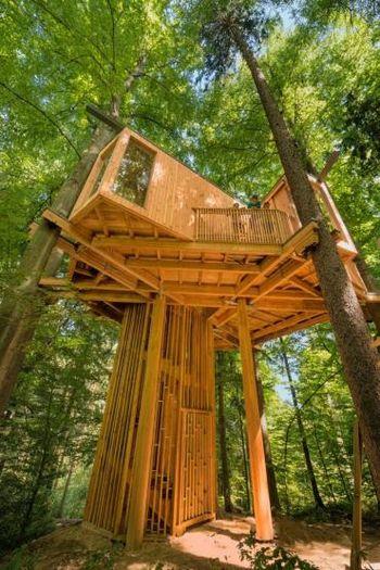 Svetovni dan turizma: Voden ogled do drevesne hiše