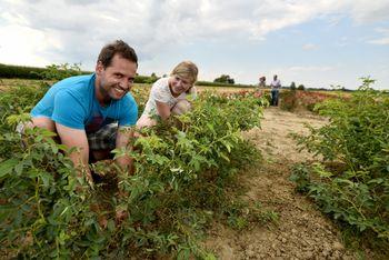 Mladi danes tudi na pot izobraževanja s področja kmetijstva, gozdarstva in živilstva