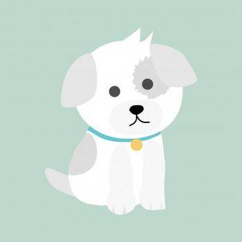 Tina -Oky, predstavitev druženja s terapevtskim psom