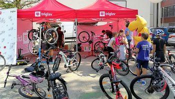 Učenci OŠ Bršljin kot ambasadorji kolesarjenja