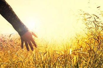 Uvodni info o pomočeh in ozdravitvah po duhovni poti s pomočjo učenja Bruna Groeninga