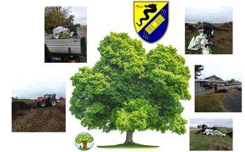 Občina Duplek sadi nova drevesa