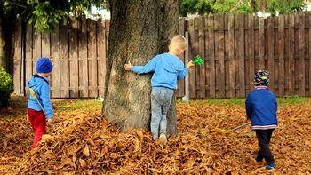 Telesna dejavnost otrok pred velikim preizkusom
