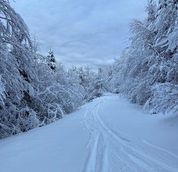 Strma je pot do zimske idile na Menini planini