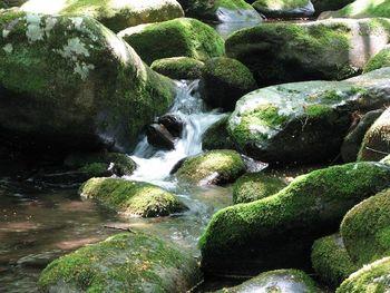 Kdo obremenjuje vodna telesa na območju Dravske in Murske kotline z nitrati