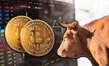 Še zadnja priložnost! Webinar kako izkoristiti rastoči kripto trg za svoje velike donose?
