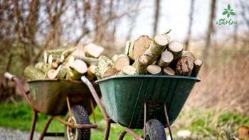 Dr. Nike Krajnc: Največja napaka je, da se za nakup lesnih goriv odločimo tik pred začetkom kurilne sezone