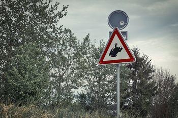 Preprečimo množične povoze dvoživk na cestah