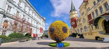 Cvetlična žoga krasi Krekov trg