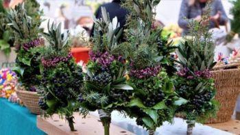 Šege in navade: Cvetna nedelja in začetek velikega tedna